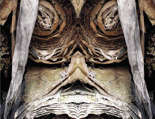 Sanjay Yamgar: Garbography