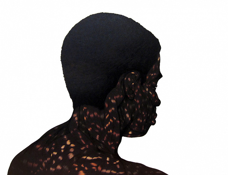 Toyin Odutola: Selected works