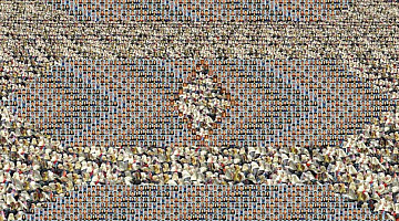 Sadegh Tirafkan   Human Tapestry